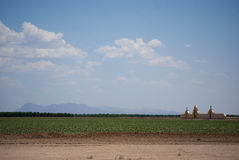 Verlaten Begraafplaats Stock Afbeelding