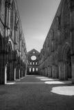 Verlaten Cathedrale van San Galgano Royalty-vrije Stock Foto's