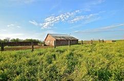 Verlaten en Vergeten boerderij Royalty-vrije Stock Foto