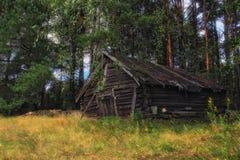 Verlaten fairytale huis in het struikgewas van het bos Stock Foto's