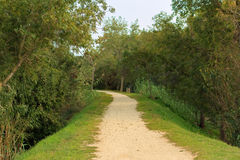 Verlaten grint wandelingsweg stock foto