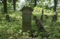 Verlaten Joodse begraafplaats in het hout dichtbij Havlickuv Brod, Tsjechische die republiek, graven met onkruid worden omringd royalty-vrije stock fotografie