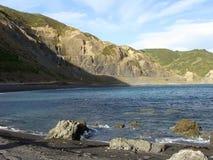 Verlaten kustlijn-Wellington-nieuw Zeeland Royalty-vrije Stock Fotografie