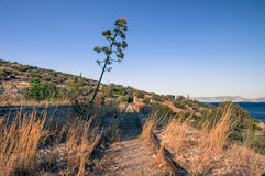 Verlaten kustspoorweg bij zonsondergang Royalty-vrije Stock Foto