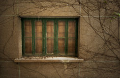 Verlaten oude vensters stock afbeelding