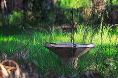 Verlaten overwoekerde fontein van drinkwater royalty-vrije stock fotografie