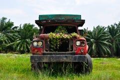 Verlaten overwoekerde vrachtwagen royalty-vrije stock foto