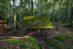 Verlaten plattelandshuisje in het bos Royalty-vrije Stock Foto