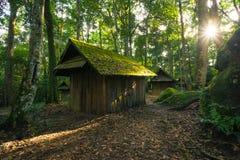 Verlaten plattelandshuisje in het bos Stock Foto