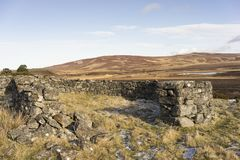Verlaten ruïnes van schapenpennen op Dava Moor in Schotland stock foto