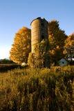 Verlaten silo en esdoornbomen Royalty-vrije Stock Foto's
