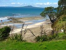 Verlaten strand Nieuw Zeeland stock foto