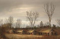 Verlaten toeristencabines op gebied met naakte bomen stock foto