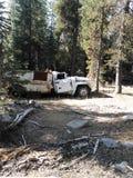 Verlaten vrachtwagen in hout stock afbeeldingen