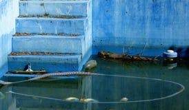 Verlaten zwembad met bevindend binnen water Royalty-vrije Stock Afbeelding