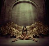 Verleidelijke jonge engel in de donkere zaal Royalty-vrije Stock Afbeeldingen