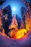Verlicht de winterbos in de Karpaten stock afbeelding
