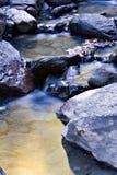 Verlicht pond stock fotografie