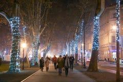 Verlichte boomsteeg op Zrinjevac Royalty-vrije Stock Fotografie