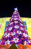 Verlichte Kerstmisboom Stock Afbeelding