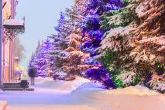 Verlichte Kerstmisboom Stock Afbeeldingen