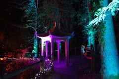 Verlichte Pagode bij Nacht Stock Afbeeldingen