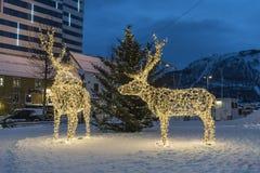 Verlichte rendierbeeldhouwwerken Tromsø Noorwegen stock foto's