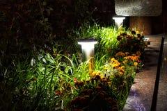 Verlichte Tuin door LEIDENE Verlichting royalty-vrije stock afbeeldingen