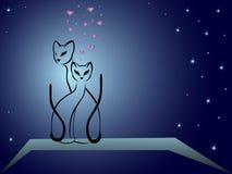 Verliebte Katzen gegen dunkelblauen nächtlichen Himmel Lizenzfreies Stockfoto