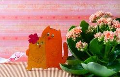 Verliebte Katzen, Valentinsgruß ` s Tag Rosa kalanchoe Blumen Stockfoto