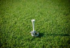 Verlobungsring und Ehering auf einem Golf-T-Stück stockfotografie