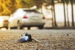 Verloren autosleutels op de gevallen naalden van blauwe sparren achteronduidelijk beeldachtergrond bokeh royalty-vrije stock afbeeldingen