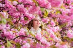 Verloren in bloesem Plantkundeconcept Meisjestoerist het stellen dichtbij sakura Kind op roze bloemen van de achtergrond van de s stock foto's