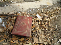 Verloren Boek Royalty-vrije Stock Afbeelding