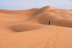 Verloren in de Duinen van het Zand van de Woestijn van Gobi Stock Afbeeldingen