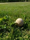 Verloren die Bal in het Gras wordt verborgen Royalty-vrije Stock Foto