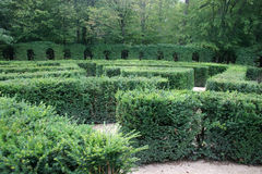 Verloren in een labyrint Stock Foto
