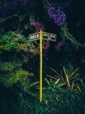Verloren in einem magischen städtischen Wald stockfotos