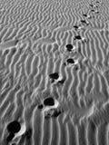Verloren in het zand. Royalty-vrije Stock Foto
