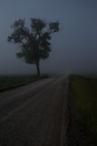 Verloren im Nebel lizenzfreies stockbild