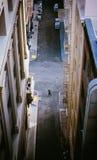 Verloren im städtischen Dschungel Lizenzfreies Stockbild