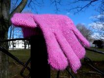Verloren Roze Verloren en Gevonden Jong geitje` s Handschoen - stock foto's