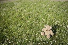 Verloren Teddybeer in openlucht Stock Foto's