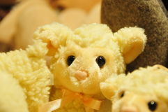Verlorene Schafe Stockfotografie