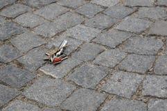 Verlorene Schlüssel Stockfotos
