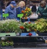 Vermarkten Sie Besucher während des Blumenverkaufs am Wochenmarkt Lizenzfreie Stockbilder