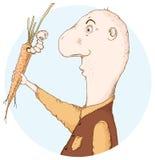 Verme in una carota Fotografia Stock