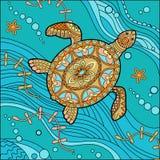 vermelha χελωνών θάλασσας νησιών coroa Bahia Βραζιλία απεικόνιση αποθεμάτων