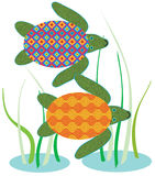 vermelha черепахи моря острова coroa Бахи Бразилии Стоковые Изображения RF