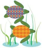 vermelha för sköldpadda för hav för bahia brazil coroaö Royaltyfria Bilder